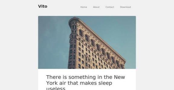 Шаблон Wordpress - Vito