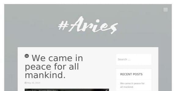 Шаблон Wordpress - Aries