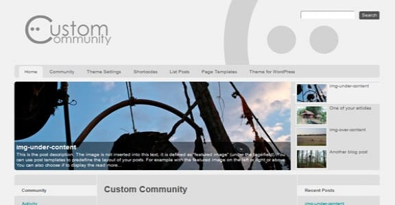 Шаблон Wordpress - Custom Community