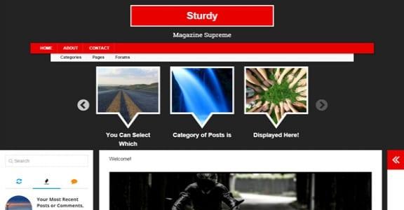 Шаблон Wordpress - Sturdy