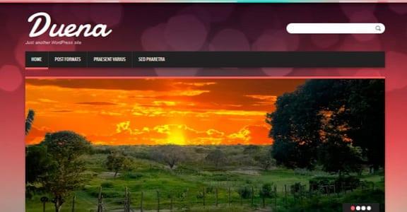 Шаблон Wordpress - Duena