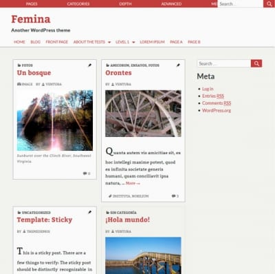 Шаблон WordPress - Femina