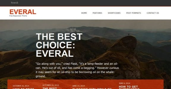 Шаблон Wordpress - Everal