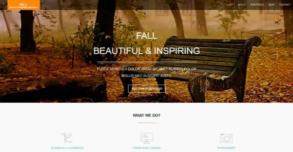 Шаблон Wordpress - Fall