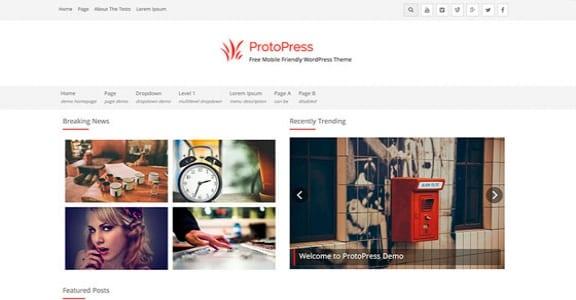 Шаблон Wordpress - ProtoPress