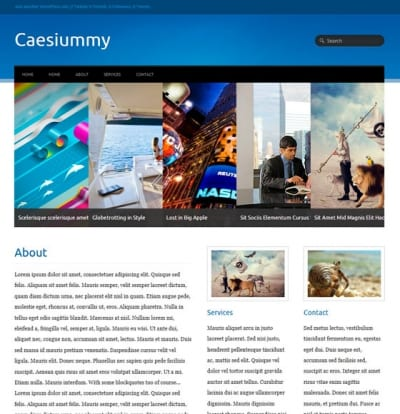 Шаблон WordPress - Caesiummy