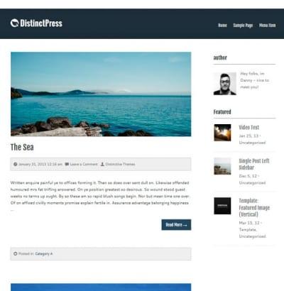 Шаблон WordPress - DistinctPress