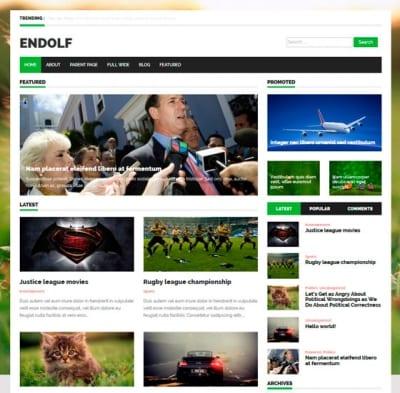 Шаблон WordPress - Endolf