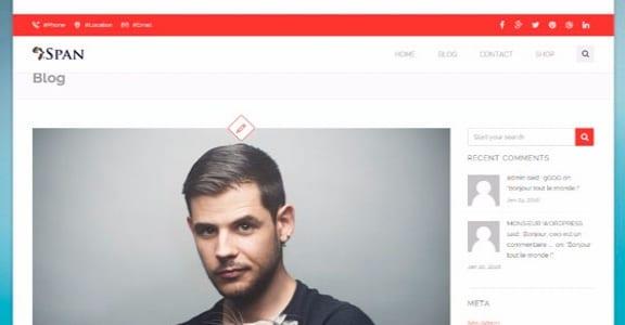 Шаблон Wordpress - Span
