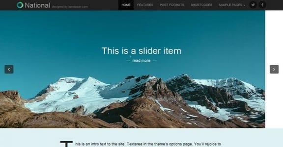 Шаблон Wordpress - National Basic