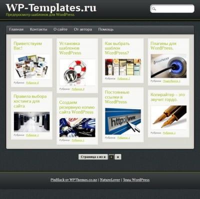 Шаблон WordPress - PinBlack
