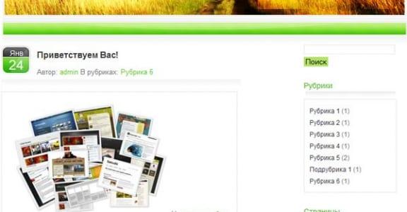 Шаблон Wordpress - Shiny Green