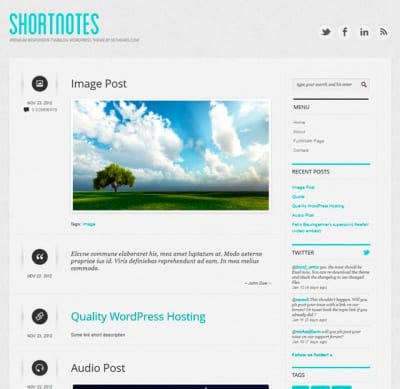 Шаблон WordPress - Shortnotes