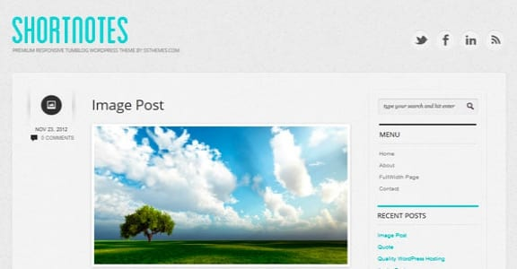 Шаблон Wordpress - Shortnotes