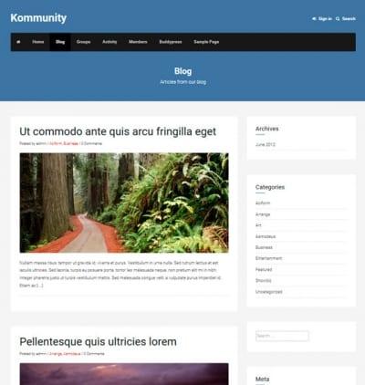 Шаблон WordPress - Kommunity