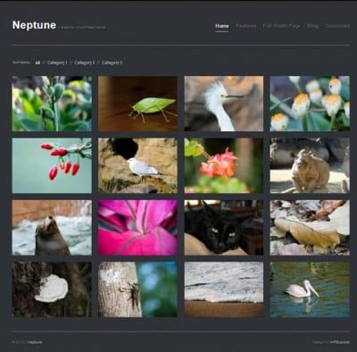 Шаблон WordPress - Neptune