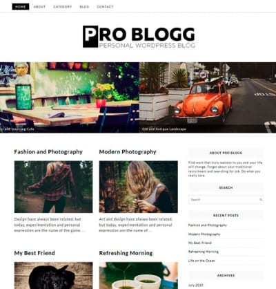 Шаблон WordPress - Pro Blogg