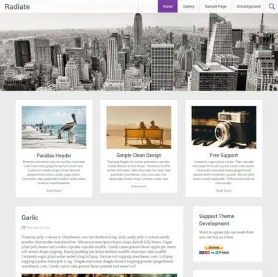 Шаблон WordPress - Radiate