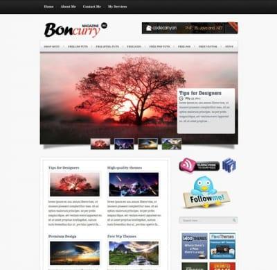 Шаблон WordPress - Bon Curry