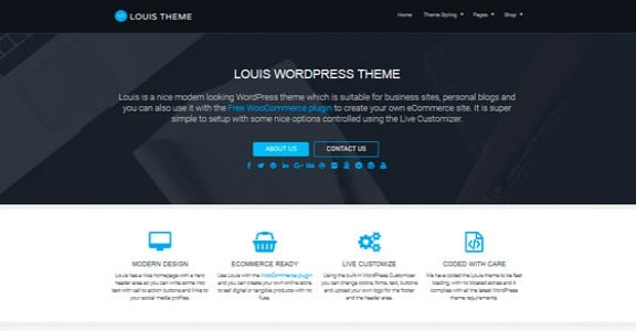 Шаблон Wordpress - Louis