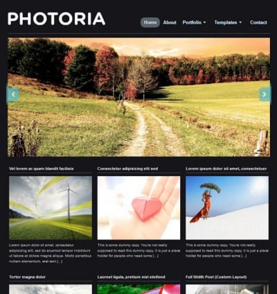 Шаблон WordPress - Photoria