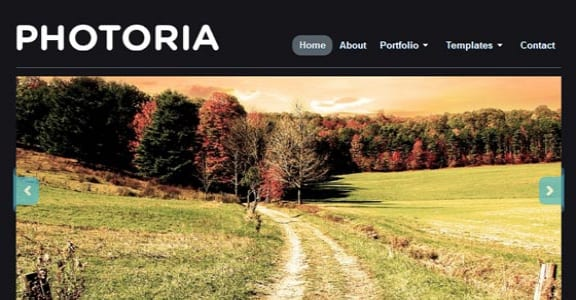 Шаблон Wordpress - Photoria