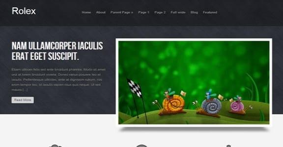 Шаблон Wordpress - Rolex