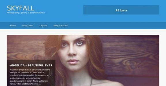Шаблон Wordpress - Skyfall