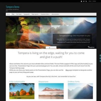 Шаблон WordPress - Tempera