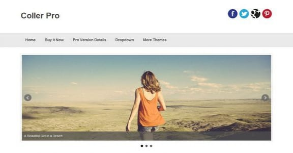 Шаблон Wordpress - Coller