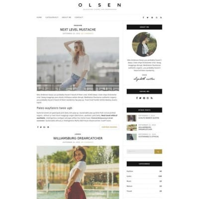 Шаблон WordPress - Olsen Light