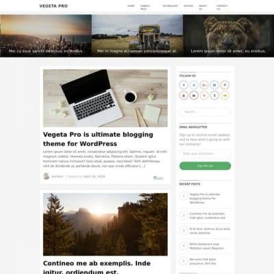 Шаблон WordPress - Vegeta