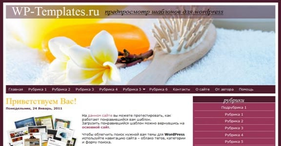 Шаблон Wordpress - Hair Care