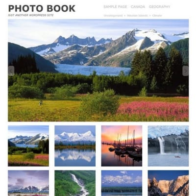 Шаблон WordPress - Photo book