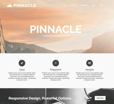 Шаблон WordPress - Pinnacle