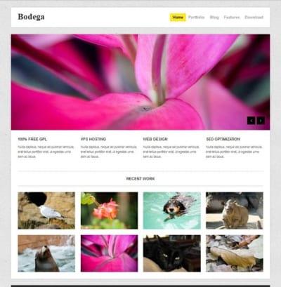 Шаблон WordPress - Bodega