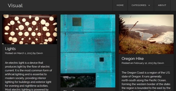 Шаблон Wordpress - Visual