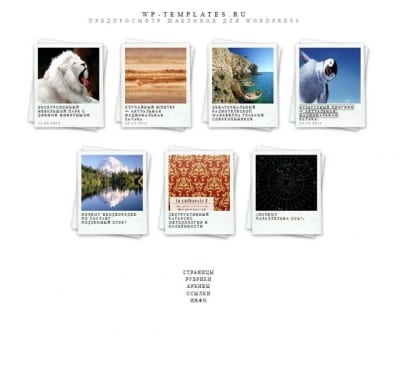 Шаблон WordPress - Polaroids