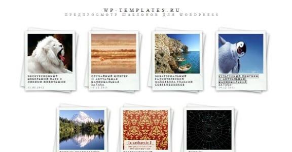 Шаблон Wordpress - Polaroids