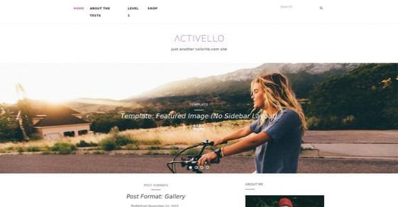 Шаблон Wordpress - Activello
