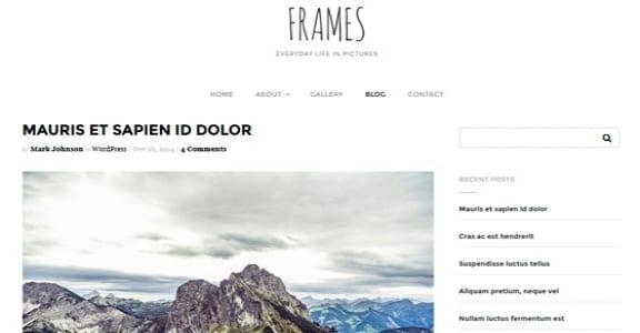 Шаблон Wordpress - Frames