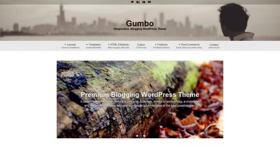 Шаблон Wordpress - Gumbo