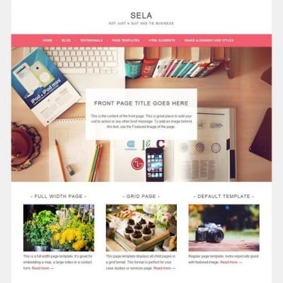 Шаблон WordPress - Sela