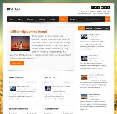 Шаблон WordPress - BiscayaLite