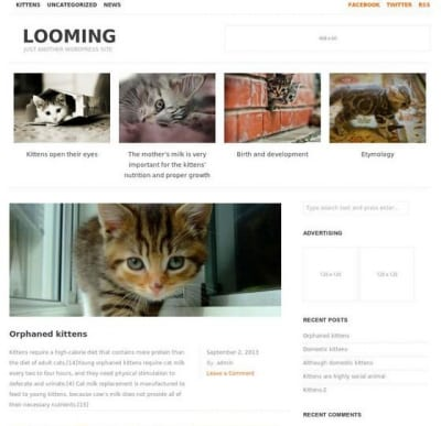 Шаблон WordPress - Looming