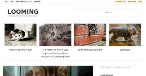 Шаблон Wordpress - Looming