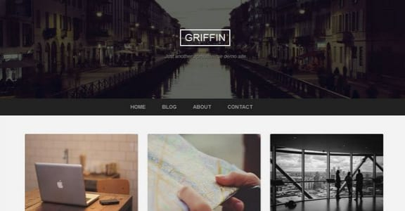 Шаблон Wordpress - Griffin