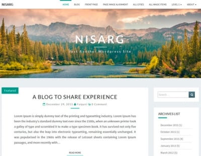 Шаблон WordPress - Nisarg