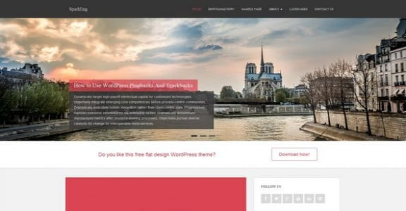Шаблон Wordpress - Sparkling