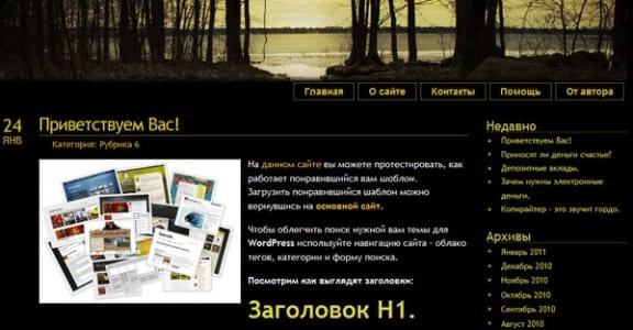 Шаблон Wordpress - BlackView